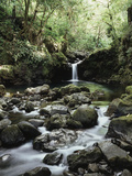 Hawaii, Maui, a Waterfall Flows into Blue Pool from the Rainforest Fotografie-Druck von Christopher Talbot Frank