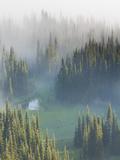 Washington, Mount Rainier National Park. Overview of Surprise Lake Fotoprint van Jaynes Gallery