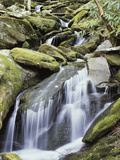 Tennessee, Great Smoky Mts National Park, Waterfalls Along Roaring Fork Stream Photographic Print by Christopher Talbot Frank