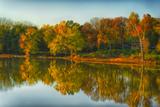 USA, Indiana, Autumn Trees Reflected in Wabash River Fotografisk trykk av Rona Schwarz