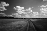 Zimbabwe, View of Road Near Linkwasha Airstrip Fotografisk tryk af Stuart Westmorland
