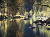 California, Sierra Nevada, Yosemite National Park, Autumn Along the Merced River Fotografisk trykk av Christopher Talbot Frank