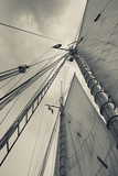 Massachusetts, Gloucester, Schooner Festival, Sails and Masts Reproduction photographique par Walter Bibikow