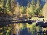 California, Sierra Nevada, Yosemite National Park, Fall Along the Merced River Fotografie-Druck von Christopher Talbot Frank