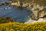 Beach and Cove, Garrapata State Park, California, USA Photographic Print by Michel Hersen
