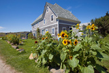Monhegan Island, Maine Reproduction photographique par Susan Degginger