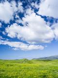 Landscape on the Island of South Uist, Uibhist a Deas. Scotland Fotografisk trykk av Martin Zwick
