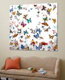 Papillon Posters by Allyson, Allyson Fukushima