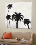 Coconut Grove I Prints by David Dauncey