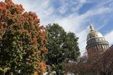 Charleston - State Capitol Building Reproduction photographique par  benkrut