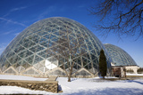 Domes in Milwaukee Reproduction photographique par  benkrut