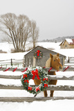 Horse on Soward Ranch Decorated for the Holidays Antelope Valley Creede Colorado Fotografisk tryk af  Design Pics Inc