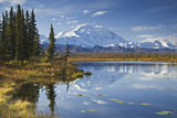 The North Face and Peak of Mt. Mckinley Is Reflected in a Small Tundra Pond in Denali National Park Impressão fotográfica por  Design Pics Inc
