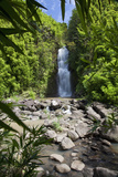 Hawaii, Maui, Hana, a Waterfall Surrounded by Lush Bamboo Plants Reproduction photographique par  Design Pics Inc