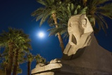 Sphinx and Date Palms with Full Moon Behind Lámina fotográfica por  Design Pics Inc