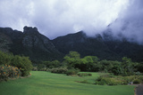 Kirstenbosch National Botanical Gardens in Cape Town, South Africa Photographic Print by Rebecca Hale