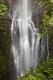 Hawaii, Maui, Kipahulu, Wailua Falls Reproduction photographique par  Design Pics Inc