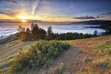 Fog Rolling in at Sunset in Big Sur, California 写真プリント : Keith Ladzinski