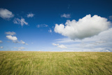 Grassy Field on Hill with Blue Skies and Clouds Fotografisk tryk af  Design Pics Inc