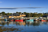Castletown Bearhaven Harbour in Beara, County Cork Photographic Print by Chris Hill