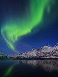 View of the Aurora Borealis, Northern Lights, Reflected in a Fjord in Norway Fotografisk tryk af Babak Tafreshi