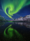View of the Aurora Borealis, Northern Lights, Reflected in a Fjord Fotografisk tryk af Babak Tafreshi