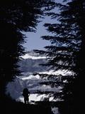 Walker Climbing Up Hill Between Trees with the Cirque De Gavarnie Fotografisk trykk av  Design Pics Inc