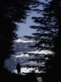 Walker Climbing Up Hill Between Trees with the Cirque De Gavarnie Photographic Print by  Design Pics Inc