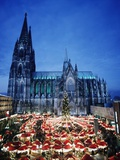 Cologne Cathedral and Christmas Market Stampa fotografica di  Design Pics Inc