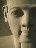 Detail of Pharaoh Head Lámina fotográfica por  Design Pics Inc