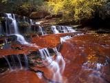 Waterfall at Zion National Park, Utah 写真プリント : Keith Ladzinski