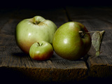 A Roxbury Russet, a Tiny Lady Apple and a Calville Blanc D'Hiver Photographic Print by Rebecca Hale