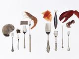 Various Forks Used for Oysters, Caviar, Sushi, Shrimp, Fish, Sardines, Lobster and Octopus Fotografisk tryk af Rebecca Hale