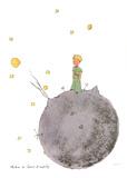 Le Petit Prince et son Asteroide Zeefdruk van Antoine de Saint Exupery