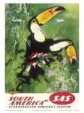 South America - Tocu Toucans - SAS Scandinavian Airlines System Kunstdrucke von Otto Nielsen