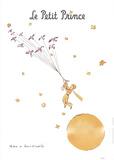 Petit Prince et les Oiseaux Sauvages Kunst af Antoine de Saint Exupery