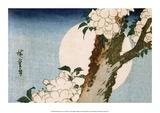 Flowering Cherry Tree and Full Moon Affiches par Utagawa Hiroshige
