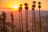 Griffith Park, Los Angeles, California, Usa. Photographic Print by  SeanPavonePhoto
