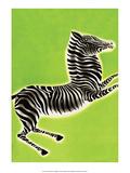 Zebra Posters by Frank Mcintosh