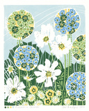 Allium and Cosmos Giclee Print by Zoe Badger
