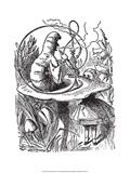 Alice no País das Maravilhas Posters por John Tenniel