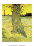 The Old Tree, 1888 Affiches par Vincent van Gogh