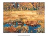 Autumn Landscape with Fox, 1918 Plakater af Bruno Liljefors