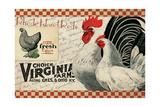 Checkered Chicken 2 Giclée-Druck