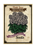 Vintage Begonia Seed Packet Giclée-tryk