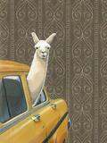 Taxi Llama Lámina giclée por Jason Ratliff