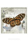 Butterfly Artifact I Prints by Alan Hopfensperger