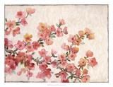 Cherry Blossom Composition II Poster von Tim
