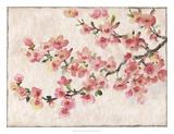 Cherry Blossom Composition I Kunstdrucke von Tim