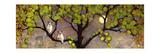 Two Owls in the Moon Light Kunstdrucke von Blenda Tyvoll